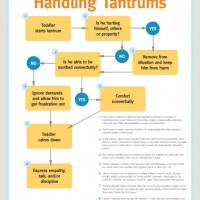 SSBE's Quick Guide to Handling Tantrums