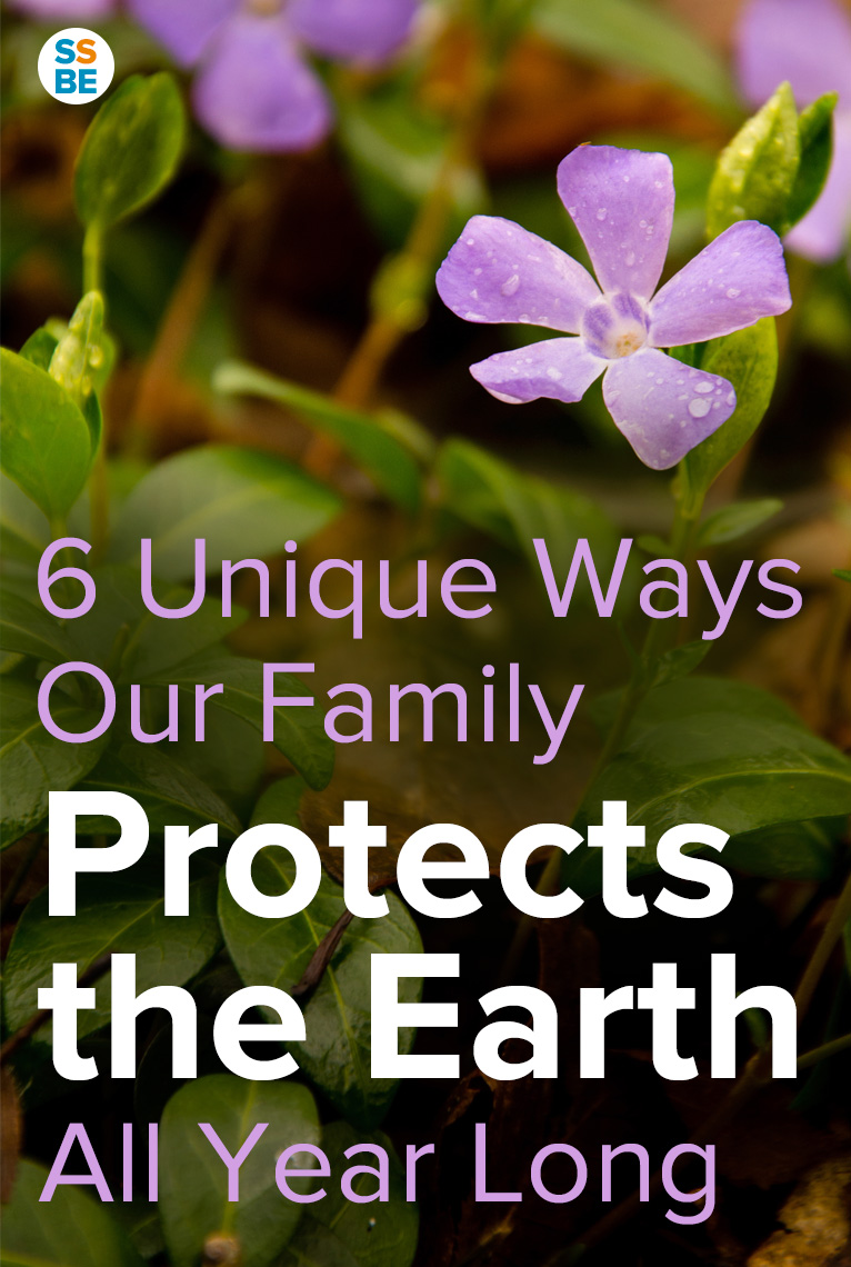 Taking care of our environment isn't just about the Three R's. From growing a garden to visiting nature spots, learn 6 unique ways one family protects the earth all year long.
