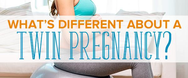 Free twin pregnancy calander