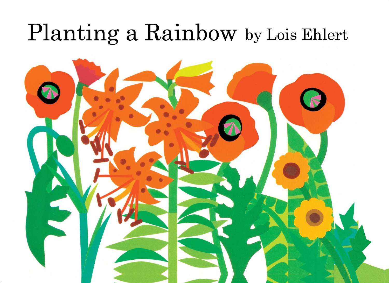 Children's Books About Colors: Top 13 Picks To Read With