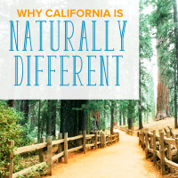 Why California Is Naturally Different