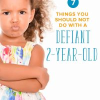 7 Things You Should NOT Do with a Defiant 2 Year Old