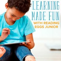 Learning Made Fun: How to Encourage Educational Play