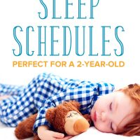2 year old sleep schedule: a little boy sleeping with a stuffed animal